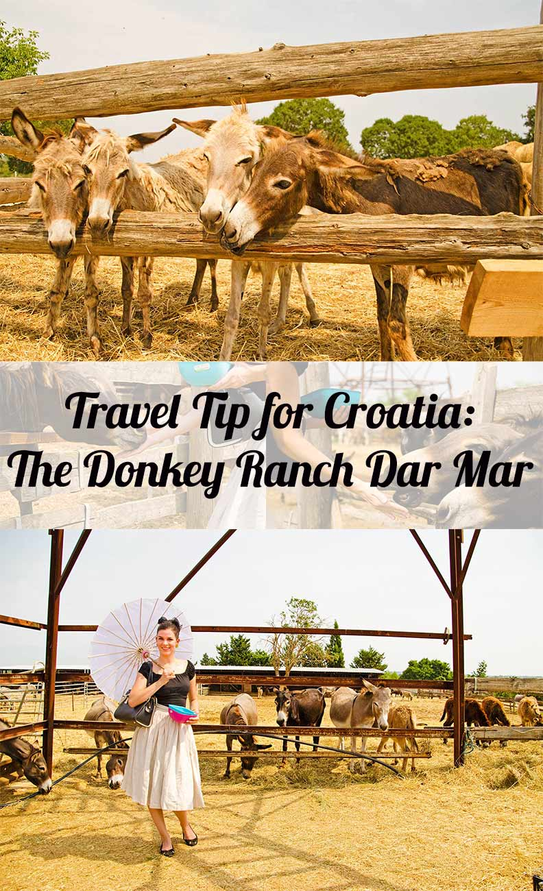 Travelling: The Donkey Ranch Dar Mar in Poljica Brig
