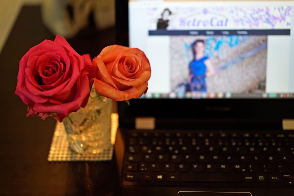 Pinke Rosen und RetroCats Netbook