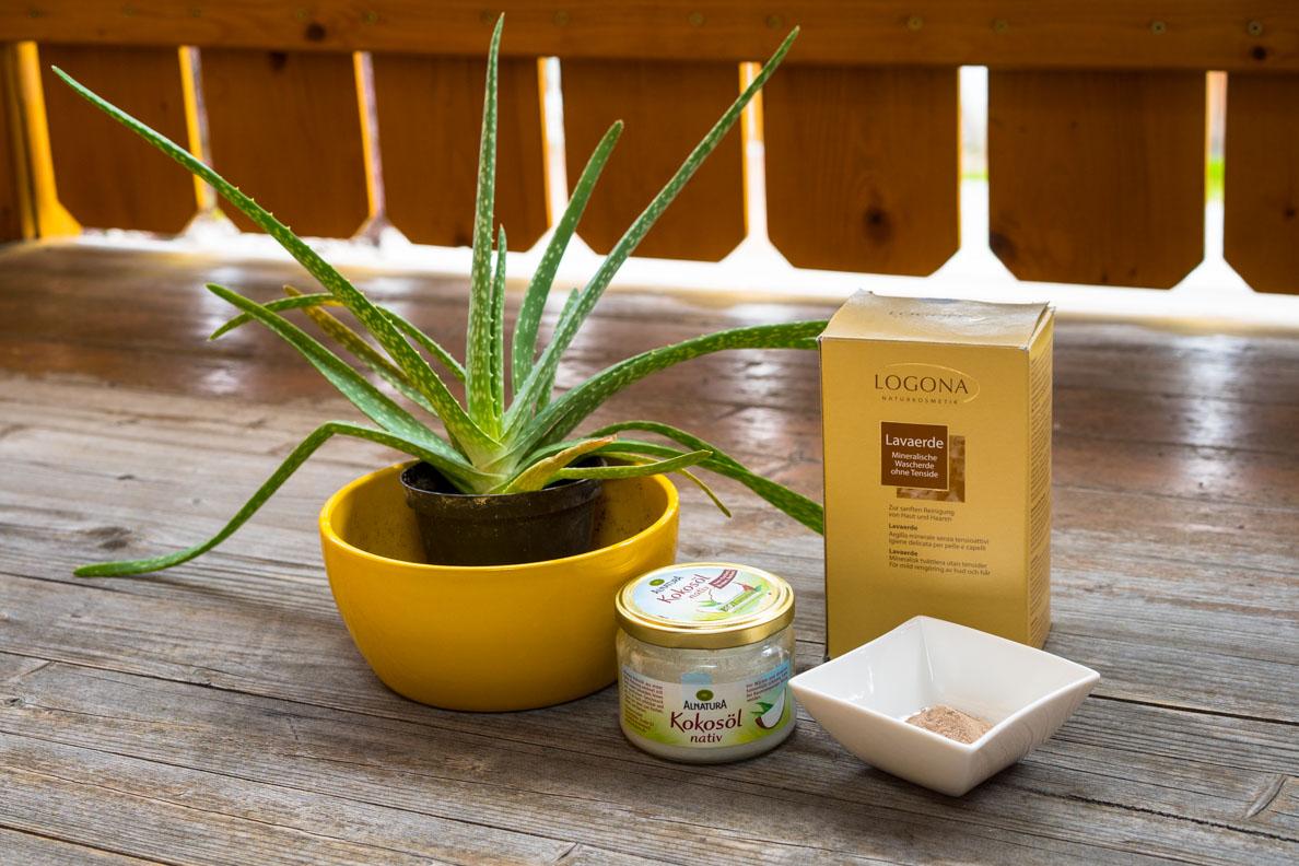 Aloe Vera, Lavaerde und Kokosöl für die Gesichtspflege-Routine