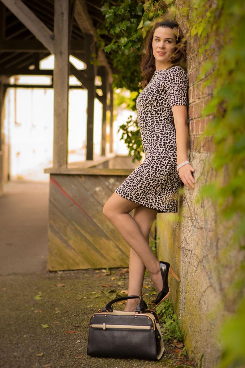 RetroCat in einem modernen 60er-Jahre-Kleid