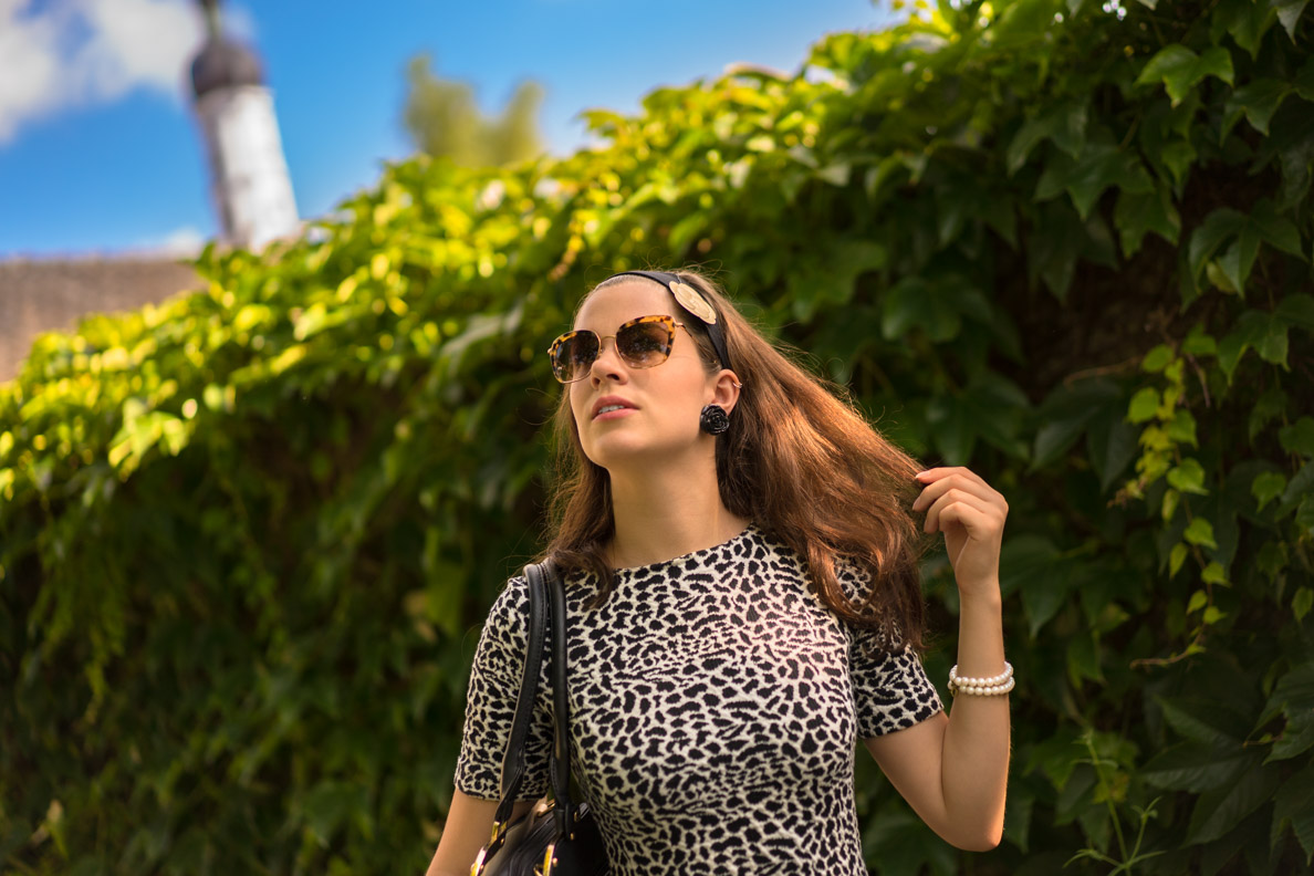 RetroCat mit einer Retro-Sonnenbrille von Miu Miu