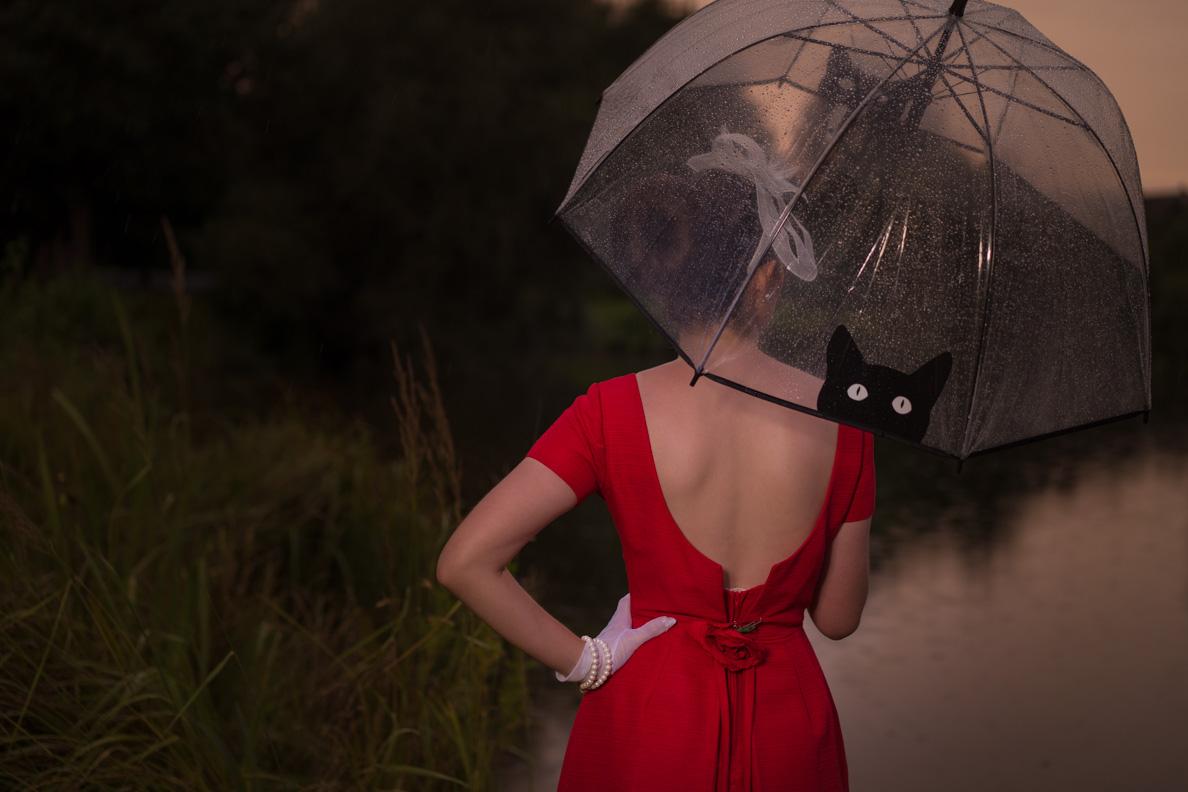RetroCat mit Vintage-Kleid, Regenschirm und weißen Accessoires