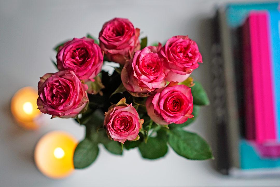 Pinke Rosen und Kerzen und RetroCats Wohnung
