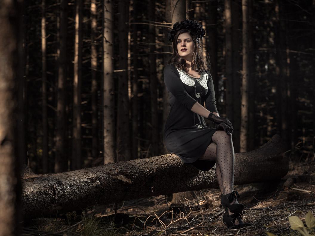 RetroCat in einem schwarzen Kleid vom Napo-Shop