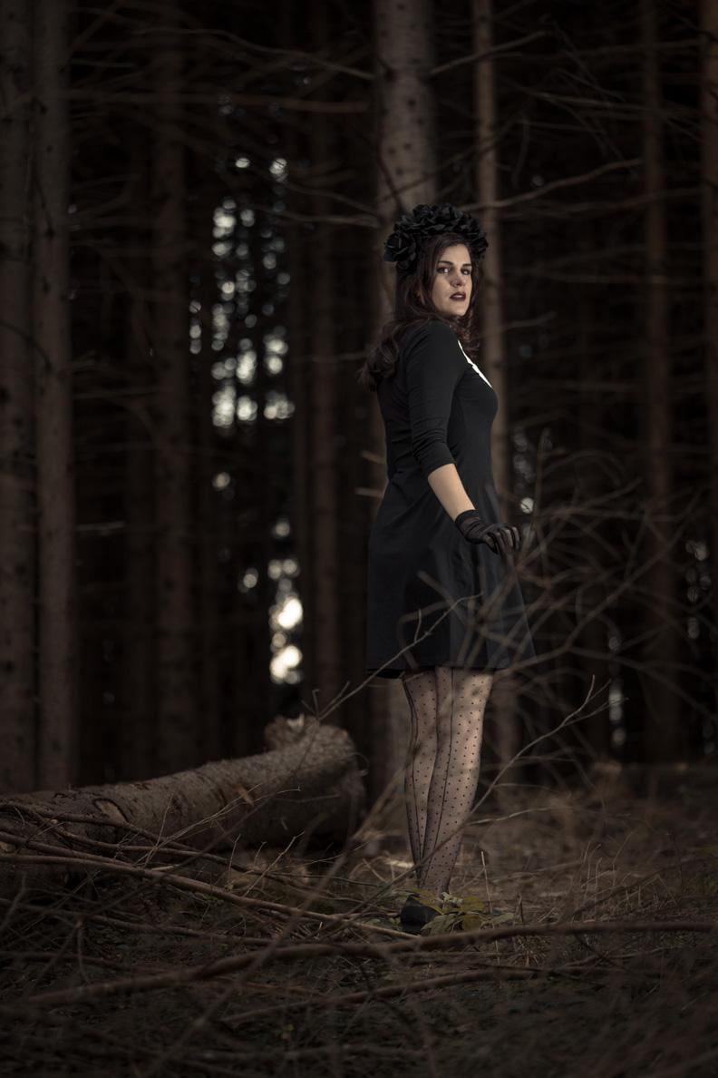 RetroCat in einem schwarzen Kleid im Stil der 60er