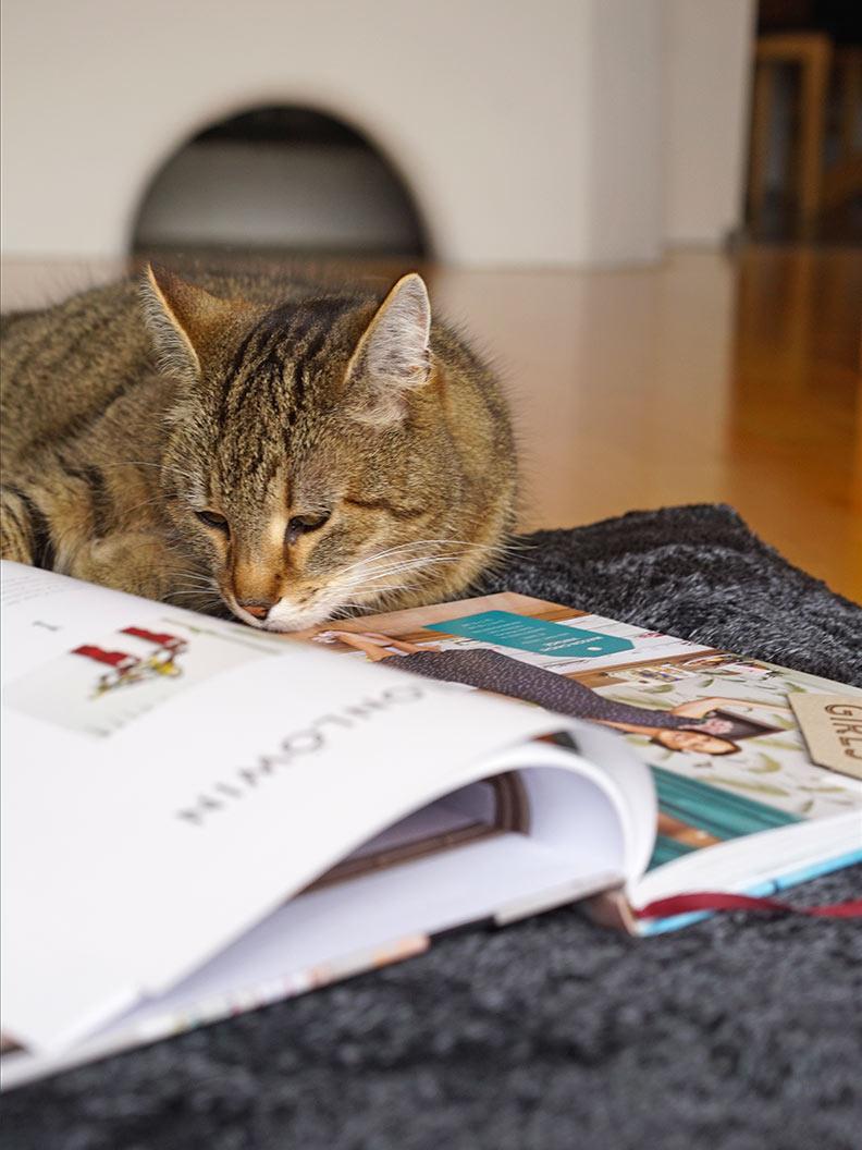 """RetroCats Katze vor dem Buch """"Shop Girls"""" von Tina Schneider-Rading und Ulrike Schacht"""