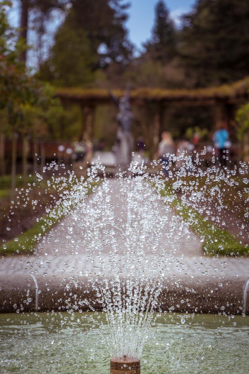 Ein Springbrunnen im Schlossgarten auf der Insel Mainau