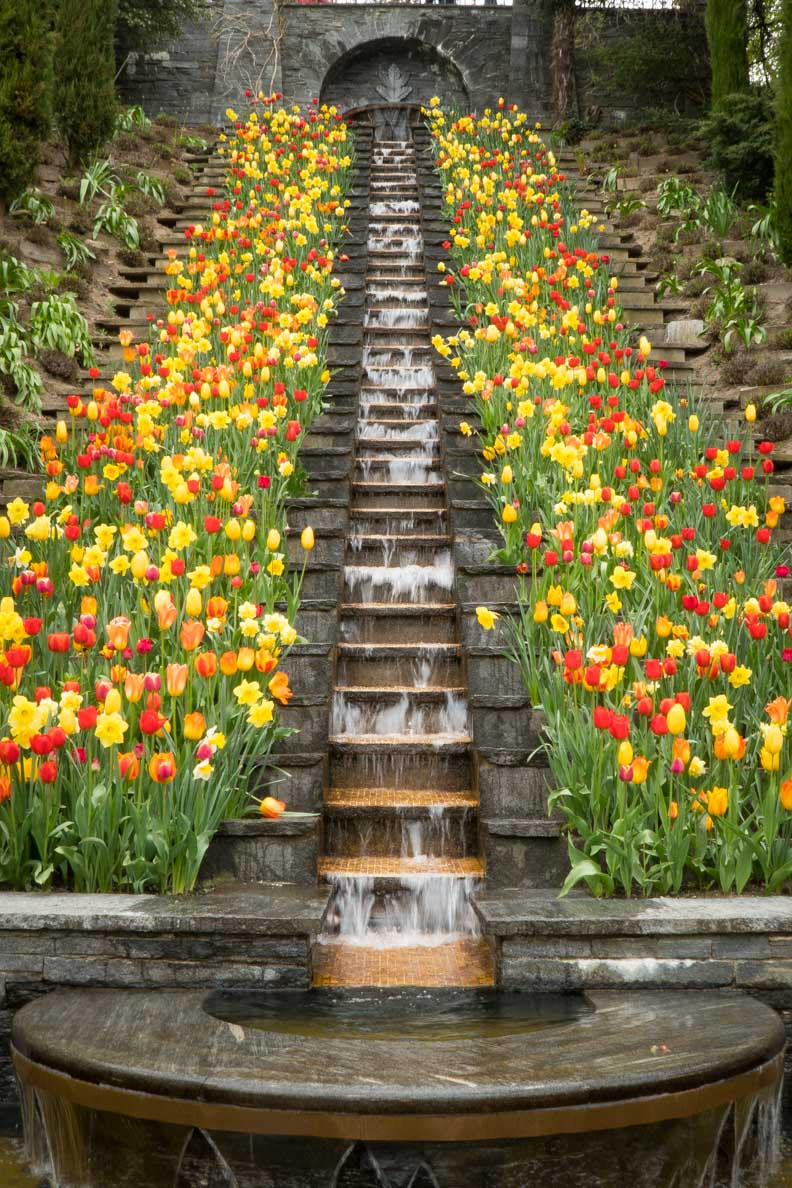 Tulpen und ein Wasserfall auf der Insel Mainau