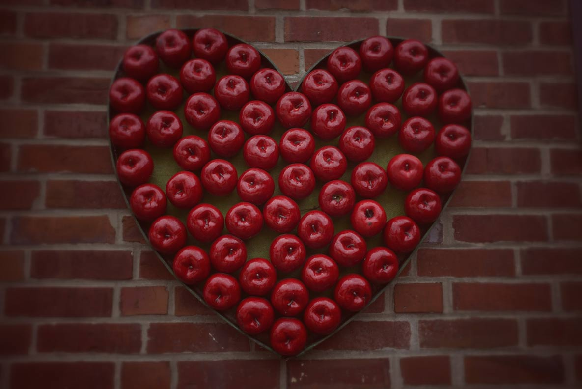 Ein Herz aus Äpfeln auf einem traditionellen Obsthof im Alten Land