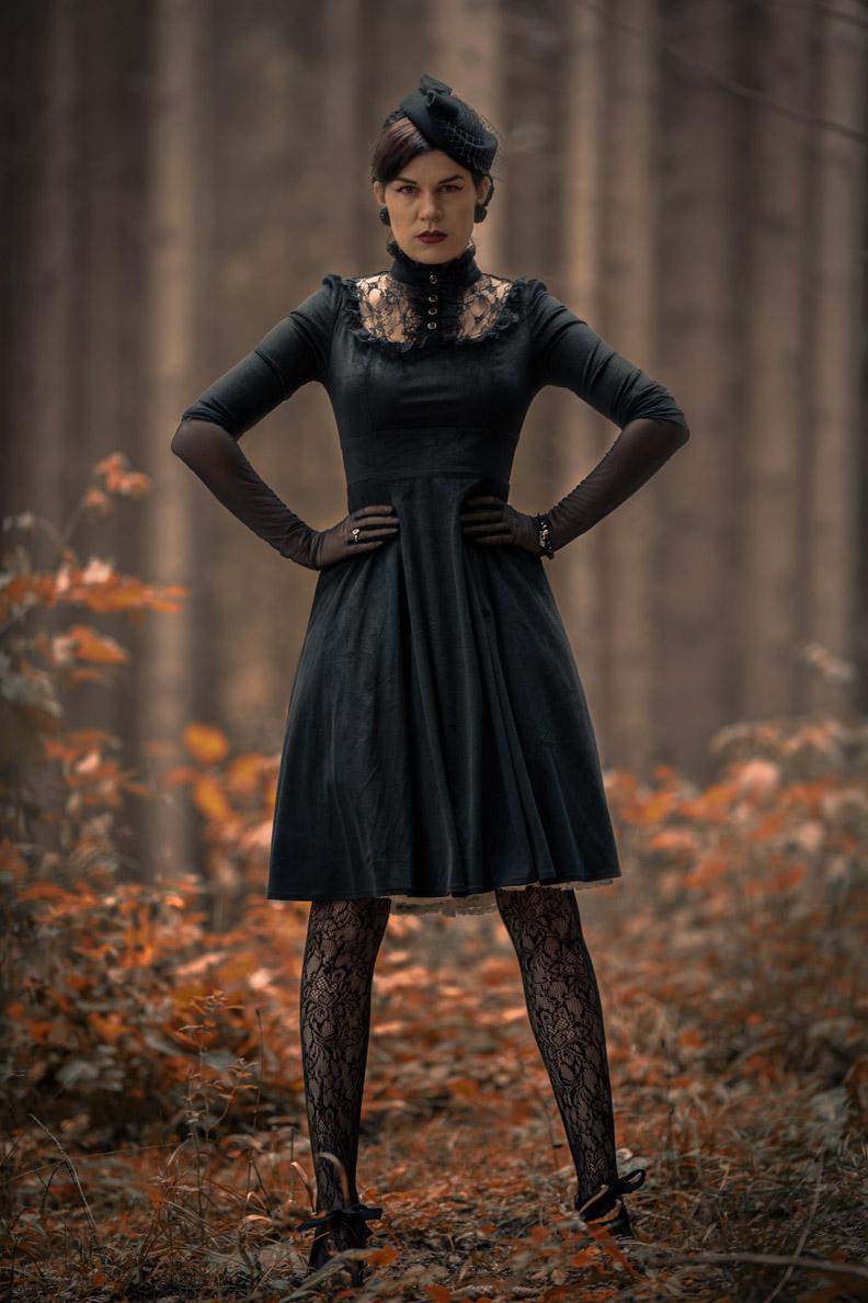 RetroCat in einem Samt-Kleid mit Spitzenkragen von BlackButterfly