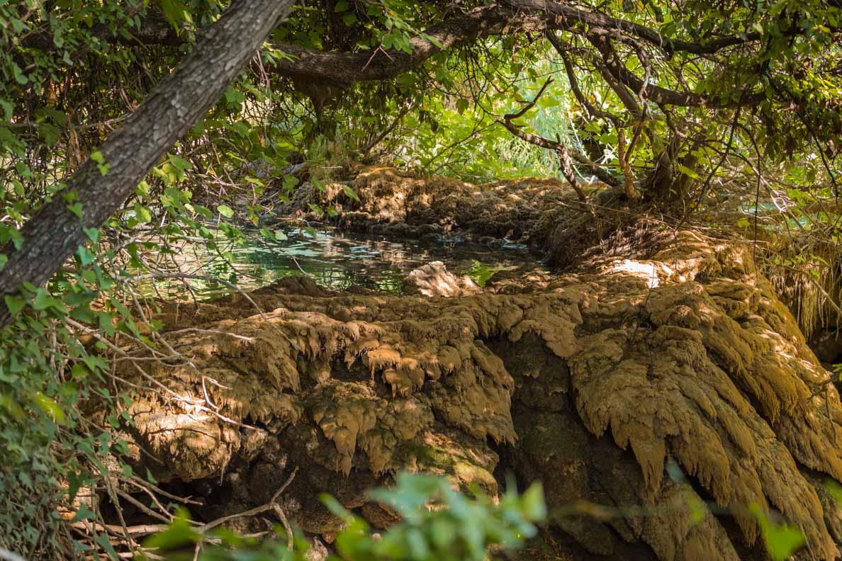 Die Wälder rund um die Krka-Fälle in Kroatien