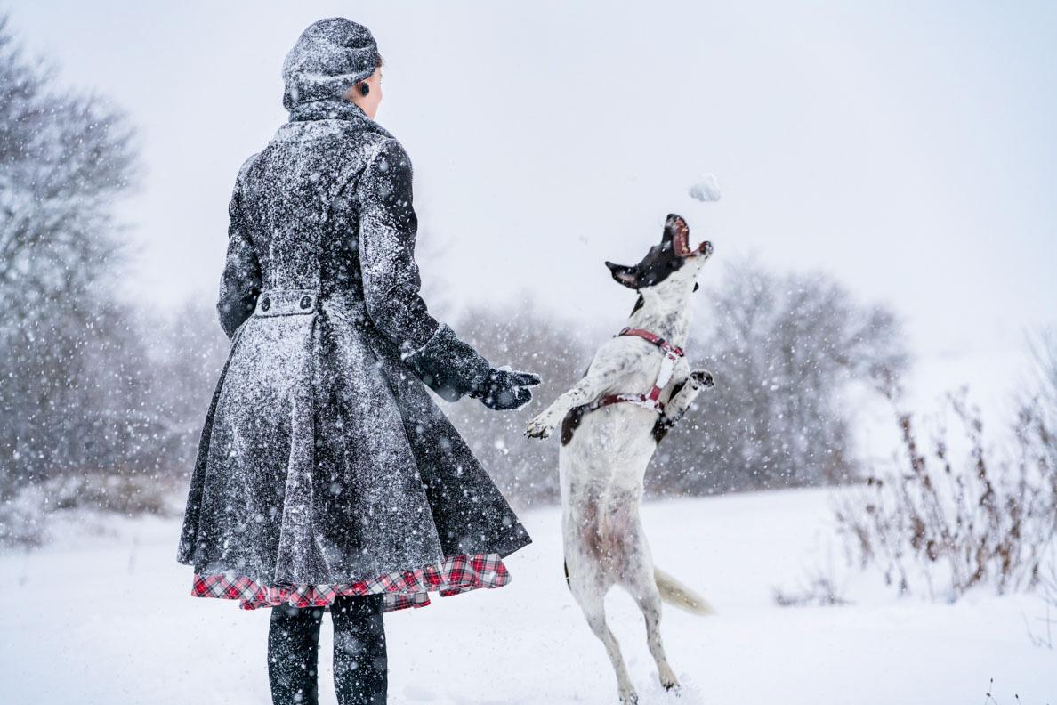 RetroCat beim Posen mit einem Hund