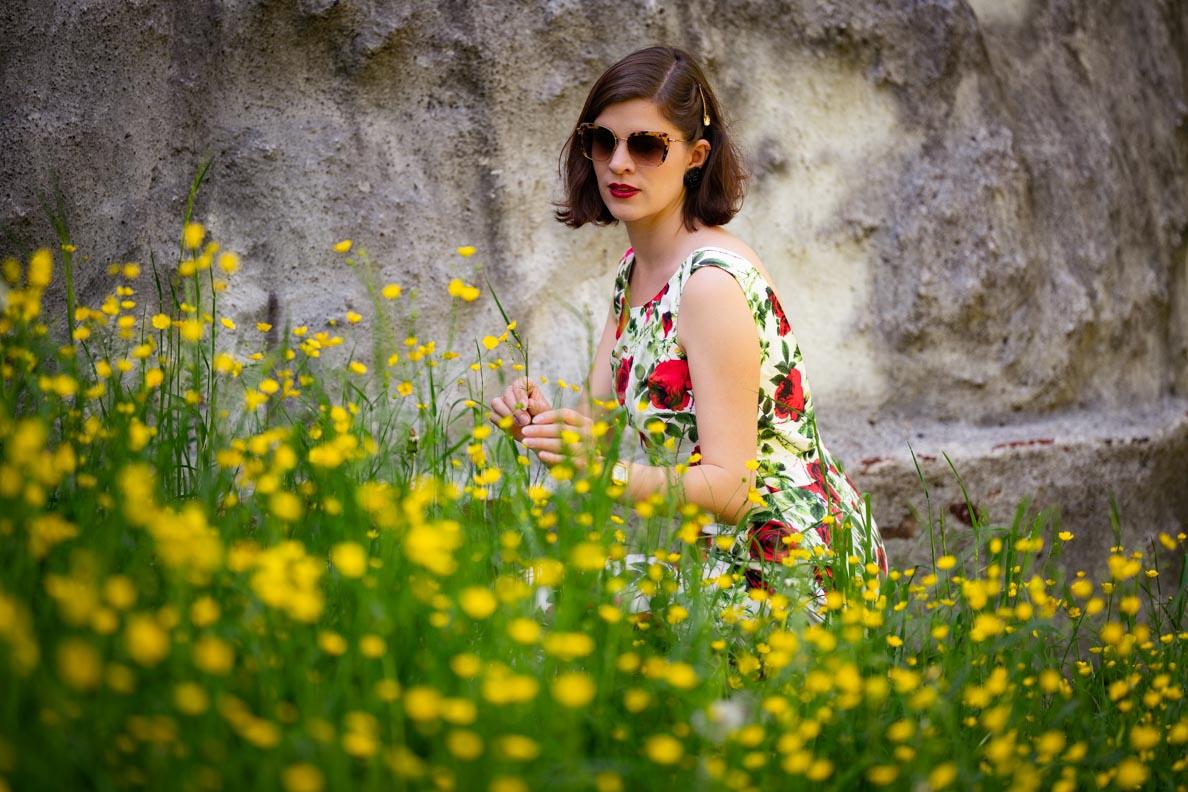 RetroCat mit Miu Miu Sonnenbrille und Retro-Kleid in einer Blumenwiese