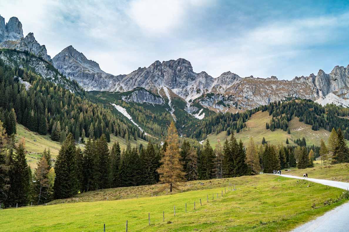 Der Blick auf die Alpen von der Oberhofalm Filzmoos aus