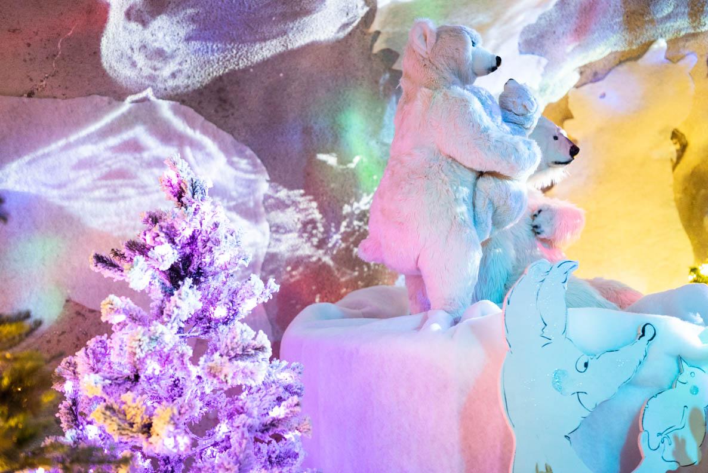 Eisbärenfamilie auf dem Rochers de Naye
