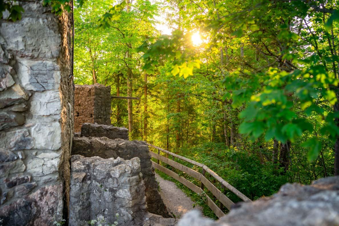 Die Burgruine Eisenberg mit einem grünen Laubwald im Hintergrund