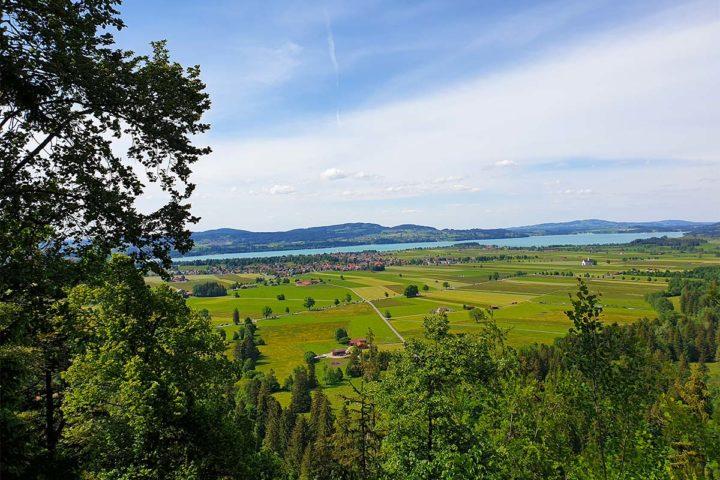 Wochenrückblick Nr. 1: Sonne, Bücher & ein Ausflug aufs Land