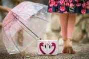 RetroCats Wochenrückblick Nr. 4: Spaziergänge im Regen & Vorfreude