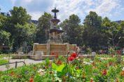 RetroCats Wochenrückblick Nr. 5: Sommerwetter & Eiscreme
