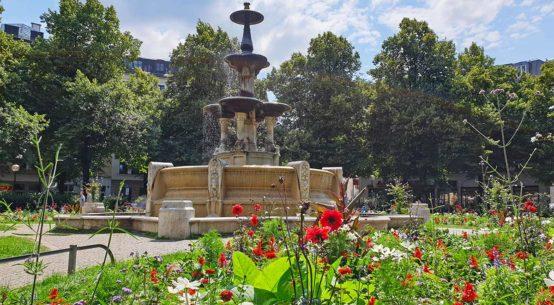My Week: Summer Weather & Ice Cream