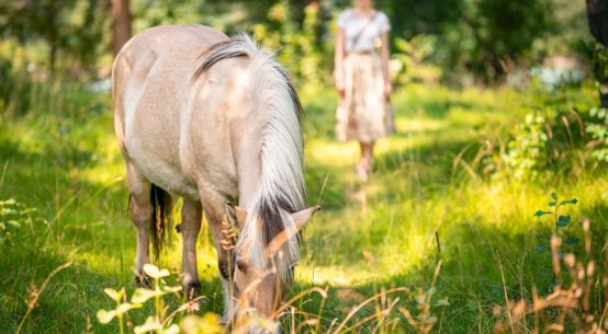 My Week: Summerdays in the Countryside and Munich Tips