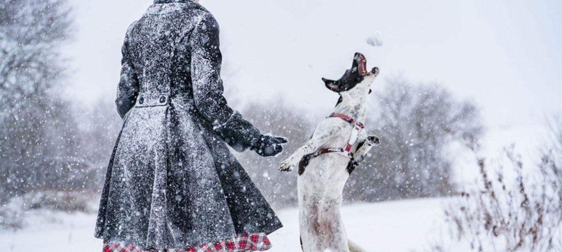 Röcke und Kleider im Winter tragen - RetroCats Tipps