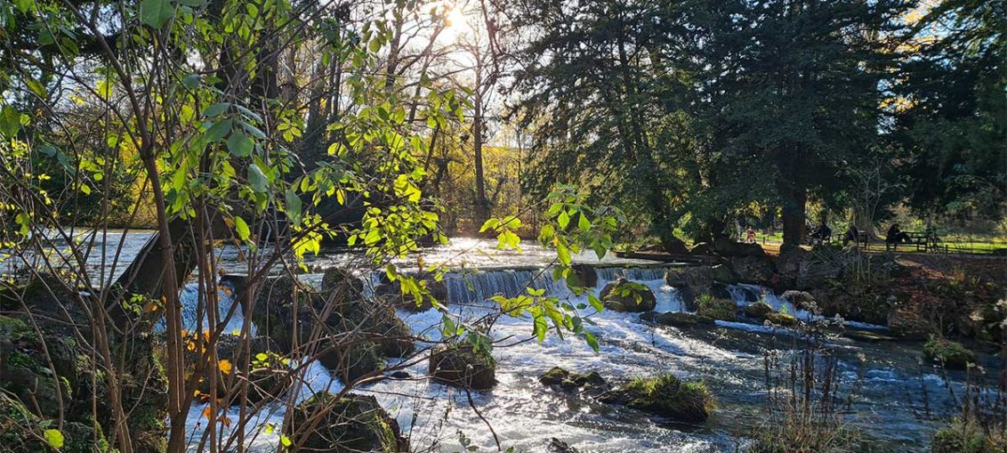 Mein Wochenrückblick Nr. 18: Herbstspaziergang