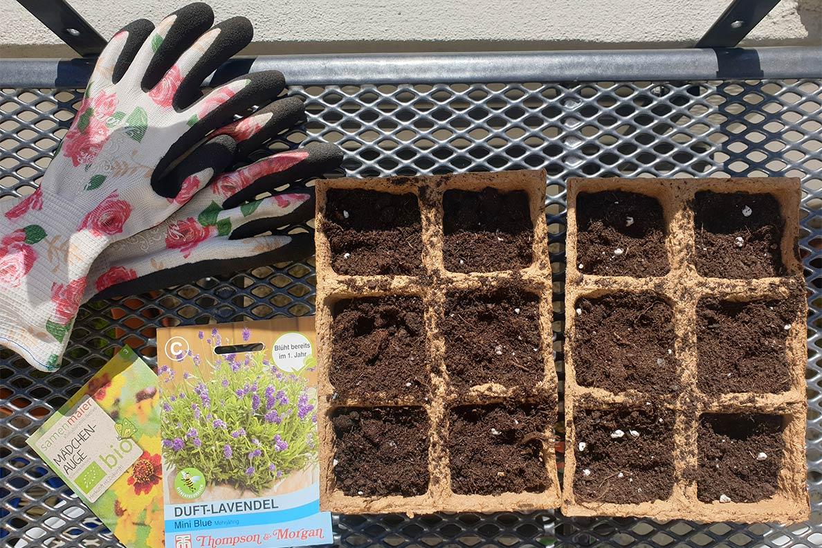 RetroCat beim Bepflanzen ihres Balkons