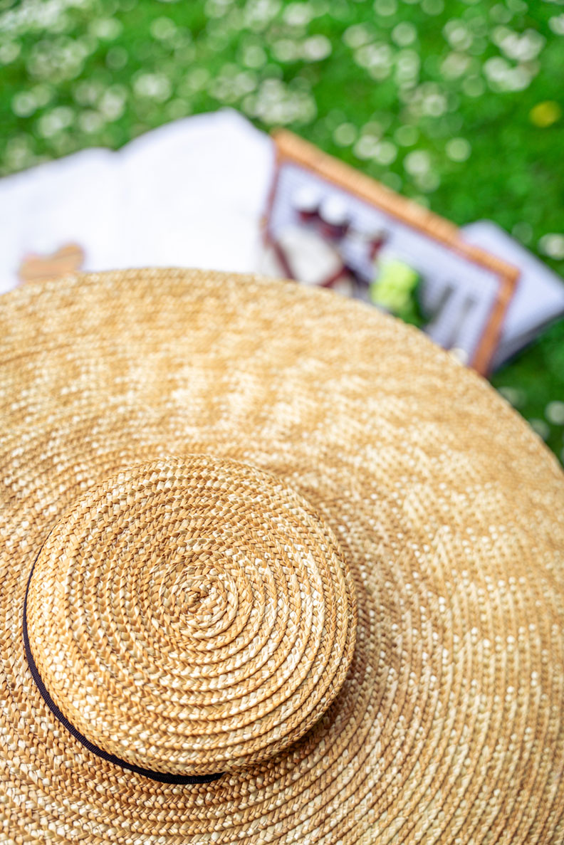 RetroCat mit einem riesigen Strohhut beim Picknick im Grünen