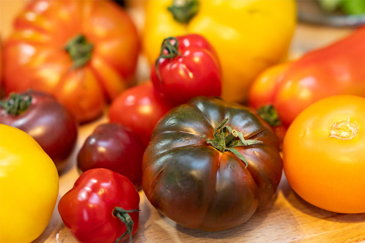 Verschiedene Sorten frischer Tomaten für eine Pastasoße